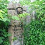 Chernivtsi cemetery