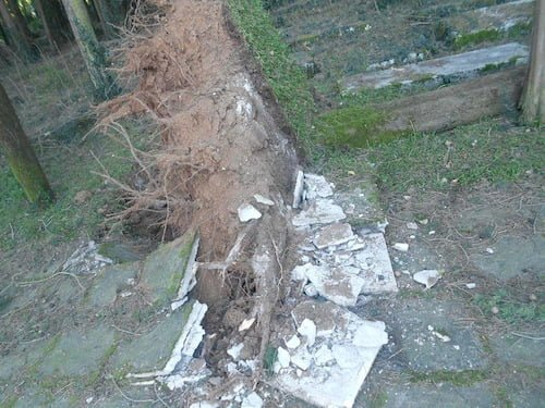 Damage in the Jewish cemetery in Ioannina, Greece. Photo courtesy Jewish community of Ioannina