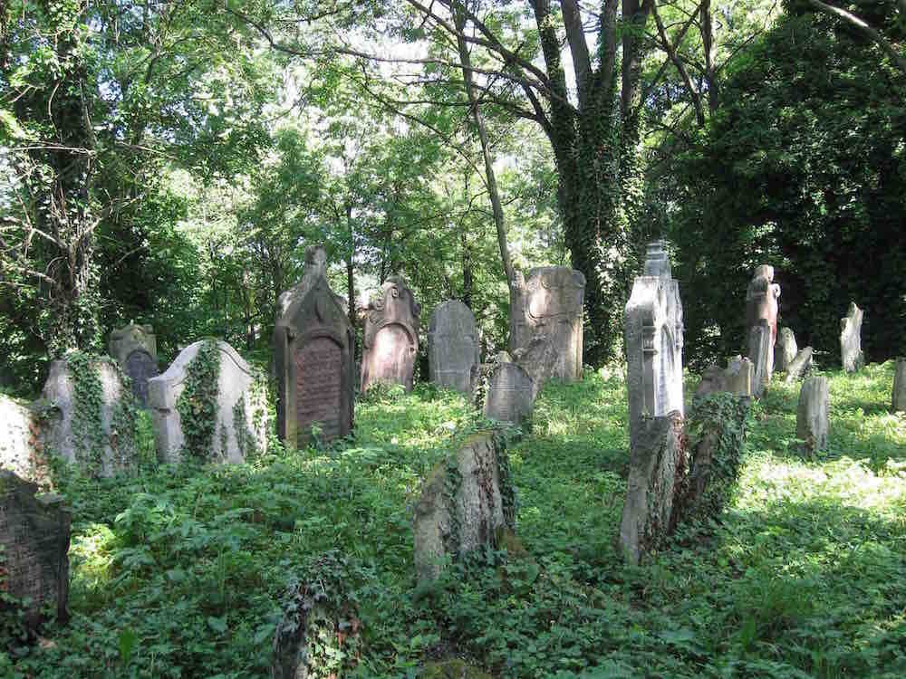 The Old Jewish Cemetery in Kolín. Photo courtesy of Rabbi Andrew Goldstein